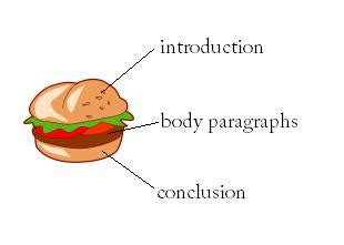 How to structure a paragraph in essay writing - EssayMin